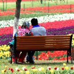 Jammu and Kashmir Honeymoon Package