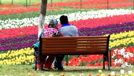 Jammu and Kashmir Honeymoon Package