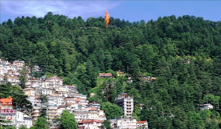 Shimla Local Package